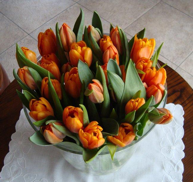 Oranje tulpen , bloemschikken , boeketten  u2022 Gette