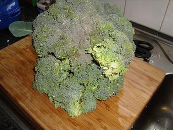 Tilapiafilet met zalfje van bloemkool en broccoli en aardappelpuree met zongedroogde tomaten 3