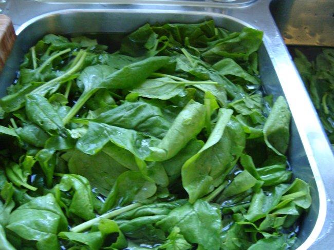 Gestoofde spinazie 1