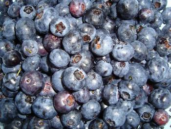 Blauwe bessenconfituur met minder suiker 2