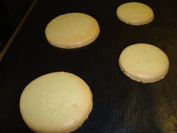Hartige macarons met guacomole en garnalen 5