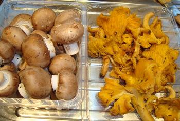 Everzwijnragout met paddenstoelen en risotto 3