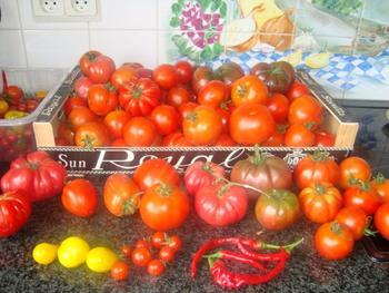Tomatensoep met witte bonen of borlotti bonen 3