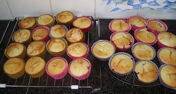 Cupcakes 8