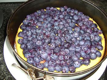 Kaasbavaroistaart met fruit 7