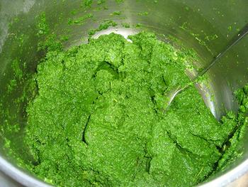 Krulkool, kale of boerenkool diepvriezen 7