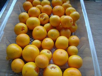 Kumquatconfituur 2