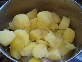 Venkelpuree met gebakken zalm en kerstomaatjes 8