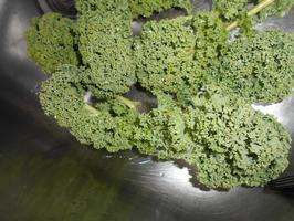 Slaatje van krokante boerenkool en kip 5