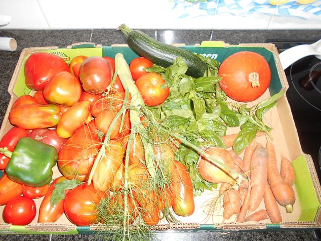 Tomatensaus  met pompoen en meerdere groenten 1
