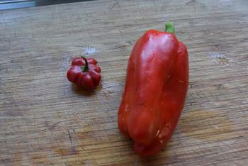 Kabeljauwhaasje met groentesaus in de oven 3