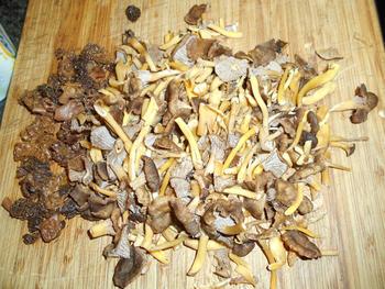 Vegetarische risotto met paddenstoelen 4