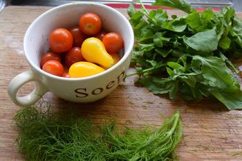 Venkelstamppot met tomaatjes, rucola en lamskoteletjes 5