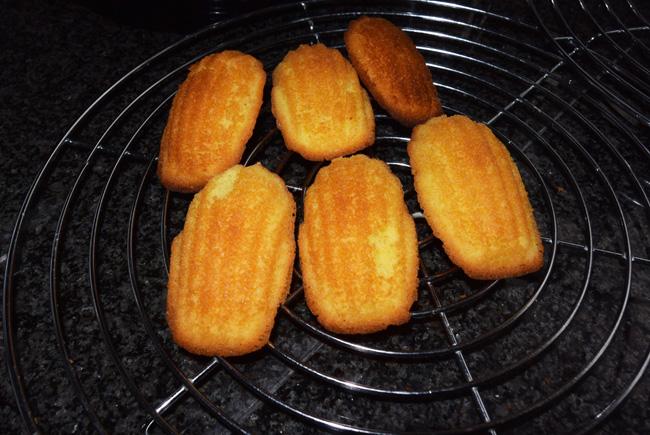 Madeleentjes (Madeleines) 1