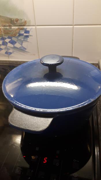 Varkensstoofvlees met mosterd 9